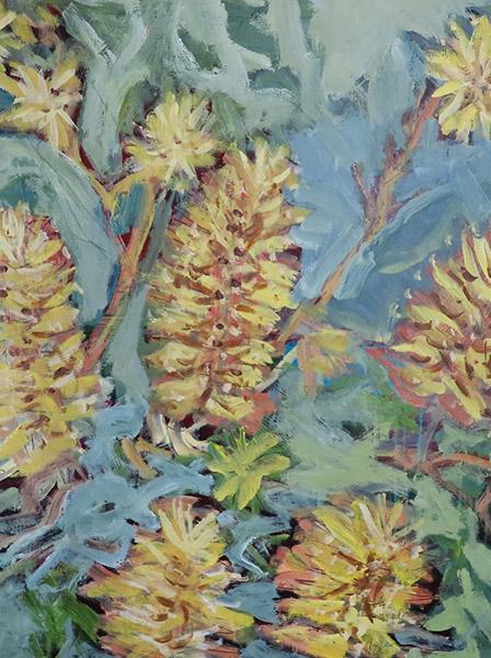 Banksia Yellow